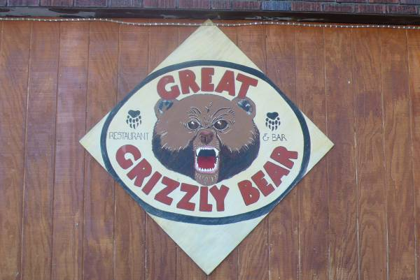 Great Grizzly Bear